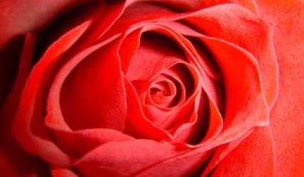 ROMANTYCZNE CHWILE (dla dwojga)